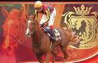 ownershorse